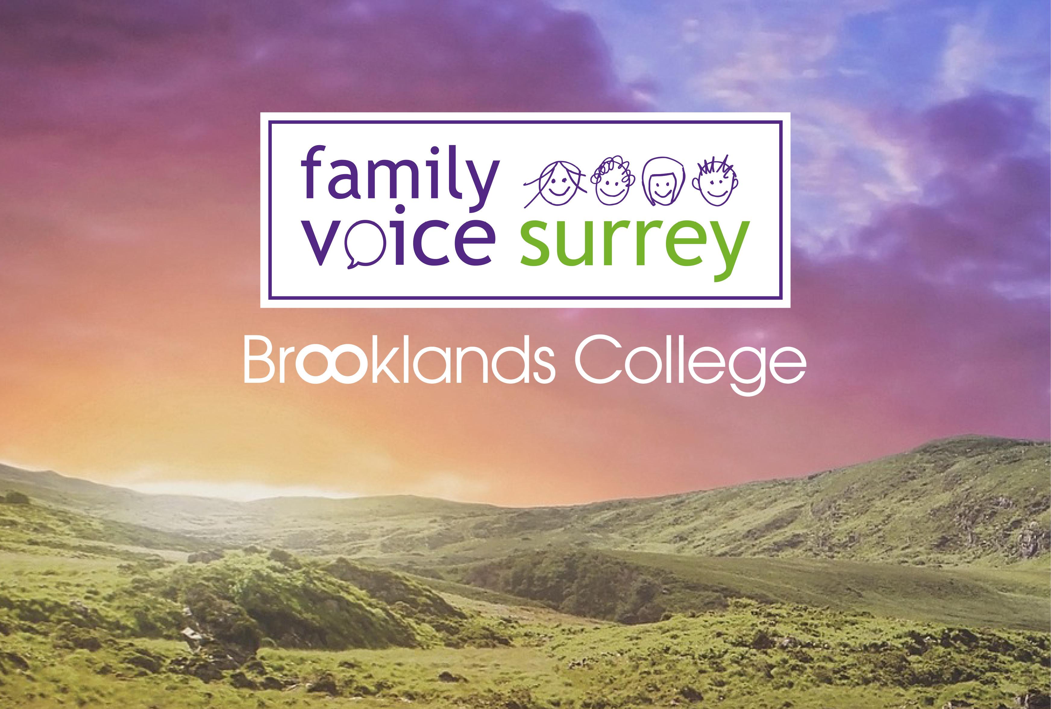 Family Voice Surrey Programme