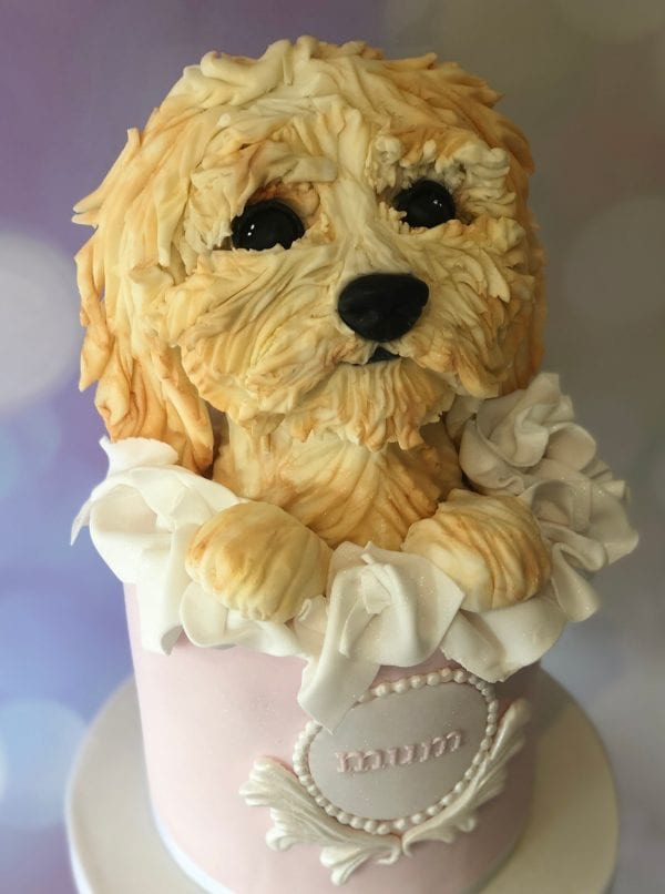 Alexandria Stevenson - Cake Decoration